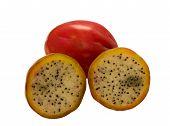 stock photo of nopal  - Beautiful photo of fruit apple cactus on a white background  - JPG
