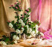 Still Life Bouquet Viburnum Hawthorn