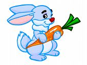 The Cartoon Illustration Of A Rabbit With An Orange Carrot.