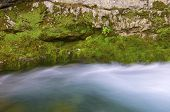 view of a mountain river in ordesa national park (Anisclo Valley), Pyrenees, Huesca, Aragon, Spain