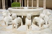 Fountain of Lions Famous marble fountain in Alhambra palace Granada Andalusia Spain.
