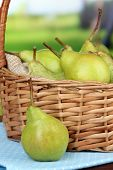 Pears in  wicker basket, on bright background