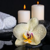 Spa Still Life Of Yellow Flower Orchid, Phalaenopsis With Drops On Black  Zen Stones, White Towels A