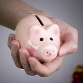 Pig Money Box In Woman Hand