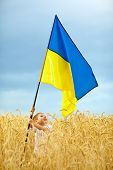 Glory To Ukraine. Boy Waving Ukrainian Flag On Wheat Field