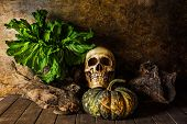 Still Life Skull And Pumpkin On The Timber.