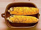 Rustic Golden Grilled Corncob