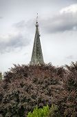 Hdr Shoot, Steeple Behind A Red Tree