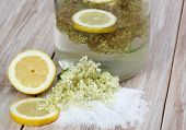 stock photo of elderflower  - Homemade healthy and tasty elderflower soft drink - JPG