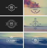 Trendy Retro Vintage Insignias Bundle. Vector shape. Fully editable in Illustrator. Only free font w