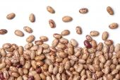 stock photo of phaseolus  - Pinto beans Phaseolus vulgaris on white background - JPG