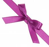 Purple ribbon with a bow diagonally