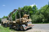 Heavy Forest Trailer With Log Pile Along Road