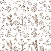 Seamless nature pattern, seeds, plants. Doodle, sketchy style, line art vector illustration.