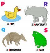 picture of armadillo  - spanish alphabet with different animals - JPG