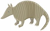 stock photo of armadillo  - funny smiling armadillo character on isolated background - JPG