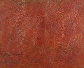 Natural Leather Texture.