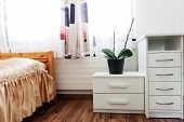 contemporary bedroom with white chest and green plant