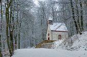 Path to Burg Eltz