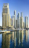 Dubai Marina Skyscrapers.