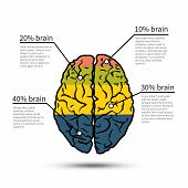 Brain infographics design. Design template workflow layout, diagram, vector.