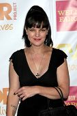 LOS ANGELES - DEC 7:  Pauley Perrette at the