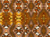Patterns From Colorful Butterfly Wing