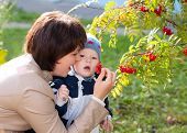 Young Mother Woman Girl And Baby Kid Son Eating Autumn Berries