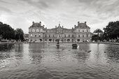 Luxembourg Palace And The Pond In Luxembourg Garden, Paris
