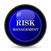 Risk Management Icon