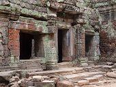 Angkor Wat, Ta Prohm Khmer temple,  Cambodia
