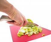 Hand Cutting Fresh Green Lettuce Salad With Grey Metal Knife On Red Plastic Cutting Board Towards Wh