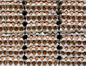 Stack of eggs in a shop
