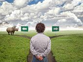 man and landscape way with huge rhino