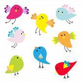 Set Of Cute Cartoon Birds Flat Design