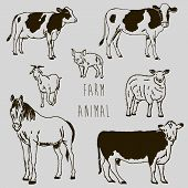 Farm animal marker sketch drawing