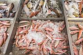 Fish Displayed For Sale On Greek Island Kalymnos