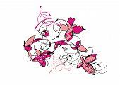 dance pink butterfly