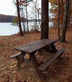 Remote Picnic Table