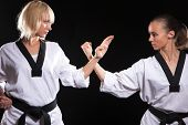 foto of martial arts girl  - Girls ready to fight - JPG
