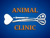 pic of veterinary clinic  - Medical tools in shape of dog bone - JPG