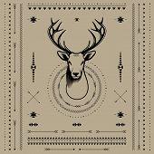 foto of deer head  - Deer head - JPG
