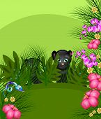 foto of panther  - Illustration of two black panthers hidden in jungle - JPG