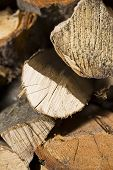 picture of firewood  - firewood  - JPG