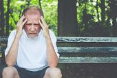 picture of pain-tree  - Closeup portrait stressed older man in white shirt hands on head with bad headache sitting on bench isolated background of trees outside - JPG