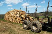 Renewable Resources Logging Industry