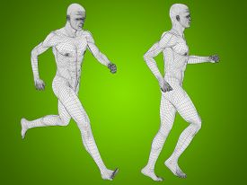 stock photo of male body anatomy  - Concept or conceptual 3D human man or male skeleton anatomy transparent body over green gradient background - JPG