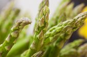 green asparagus with blur background