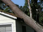 foto of katrina  - a house damaged by hurricane katrina - JPG