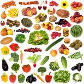 large page of food assortment on white background